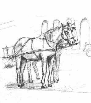 hunhorses